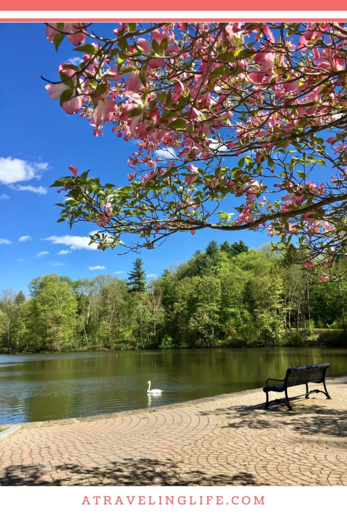 There's something for everyone in the Pioneer Valley of Massachusetts. Click to learn all there is to do in the Pioneer Valley of Western Massachusetts. | Western Mass things to do | Day trips from Boston | Things to do in Western Mass | Pioneer Valley Massachusetts | #NewEngland #Massachusetts #VisitMa