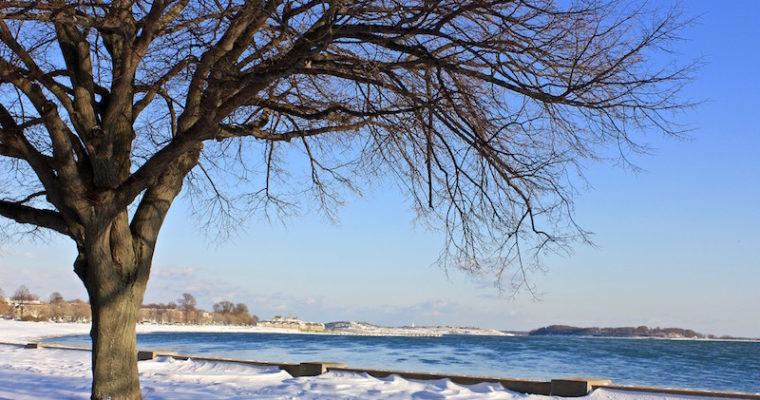 January: East Coast Adventures