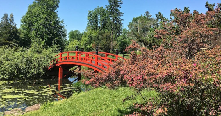 Visiting Duke Farms in the Heart of New Jersey