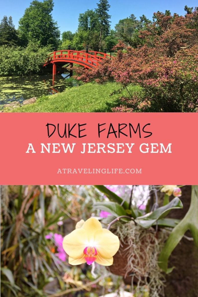 Duke Farms: A New Jersey Gem. A year-round activity to do in Somerset County, New Jersey with 1,000 acres of protected land to explore. #NewJersey #TravelTips