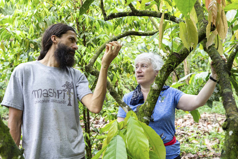 local guide shows a tourist a tree in Ecuador on a Purposeful Nomad trip
